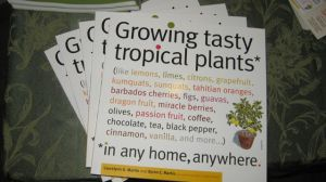 How to Grow Tropical Fruit in a pot