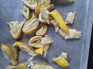 5Drying peel and pulp